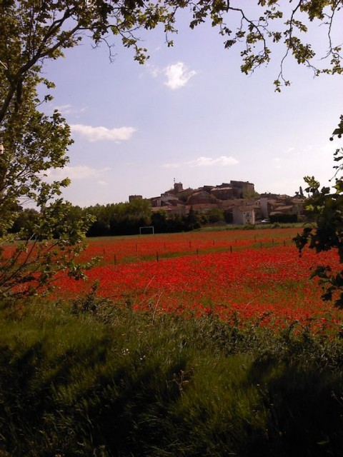 Long Term Rentals in France, Pouzols Minervois, Aude